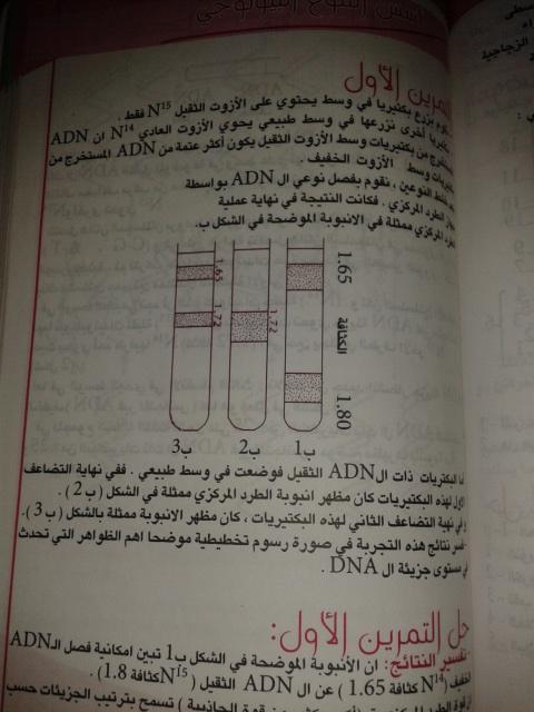 تمارين الفصل الثاني - علوم تجريبية - 5y4zh2
