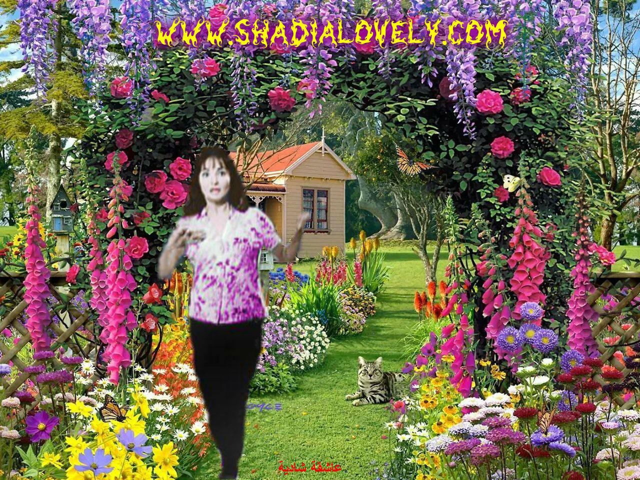 تصميمات وهمسة قلم نور الحياة شاكر - صفحة 22 5zejhk