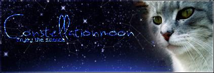 Crush the lightning *Constellationpaw* Ab59q9