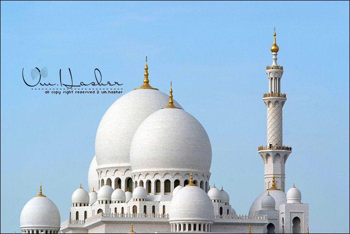 هنصلى فين النهاردة (مسجد الشيخ زايد) Eanz9g