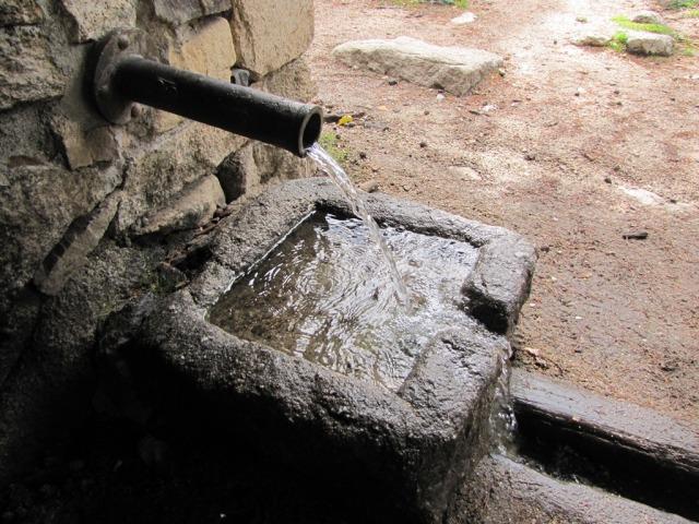 20121111 - PASEO POR LAS DEHESAS - SENDERISMO SUAVE Hsnhb7