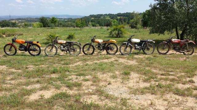 ducati - Proyecto restauración: MT 50 TT Ogdmvd