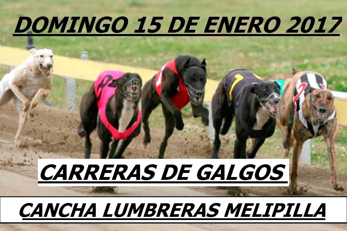 Carreras cancha Lumbreras Melipilla  el Domingo 15/01/2017 1044tp5
