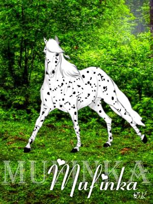Mufinka