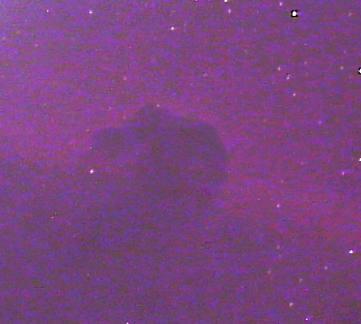 Nebulosas da Constelação de Orion 28rfm6h