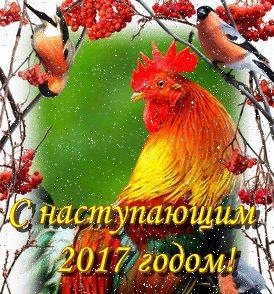 С наступающим Новым 2017 годом 2inkg4