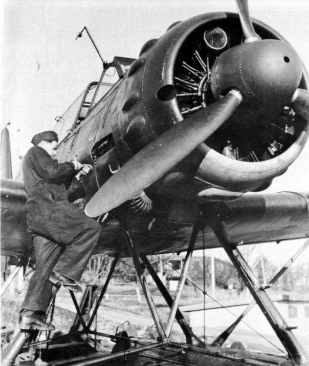 Arado A196A-3 Revell 1/32 2iuqo2q