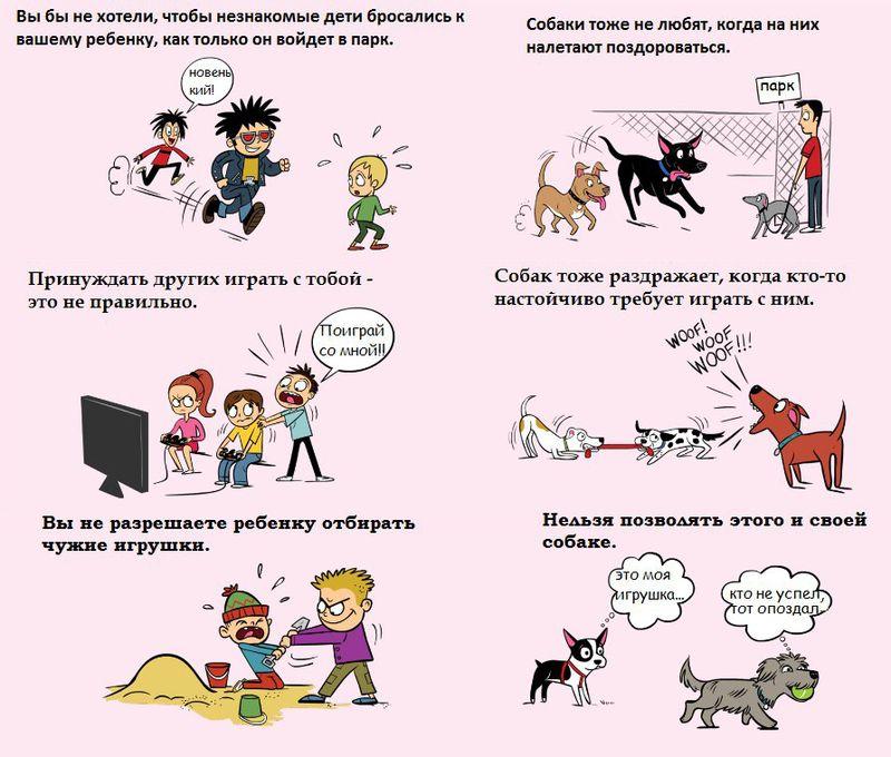 Советы начинающему собаководу (в картинках) - Страница 3 2vi34w4