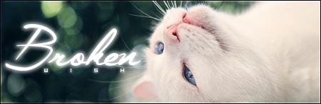 Wat zouden jouw kattennamen in het nederlands zijn? - Pagina 11 2vj98xw