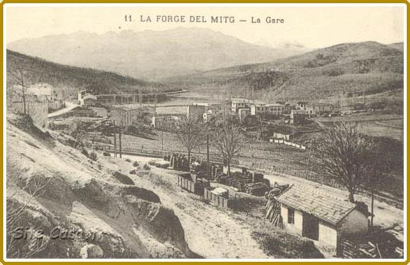 El tren petit de l'Alt Vallespir. 358nh34