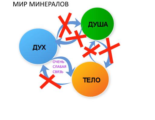 УРОК 12. МАГИЯ РАСТЕНИЙ  Euk0v8