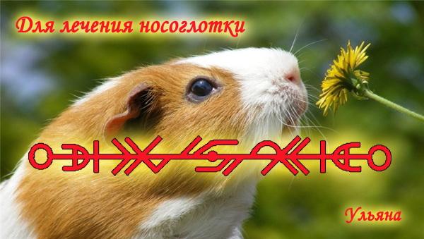 """Ульяна """"Для лечения носоглотки"""" R0c8ib"""