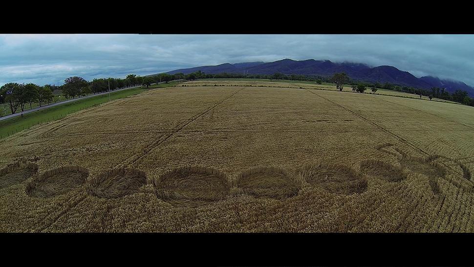 Crop Circle de Chicoana, Salta -  Zona cero - 2008 - 2015 Zirmoo