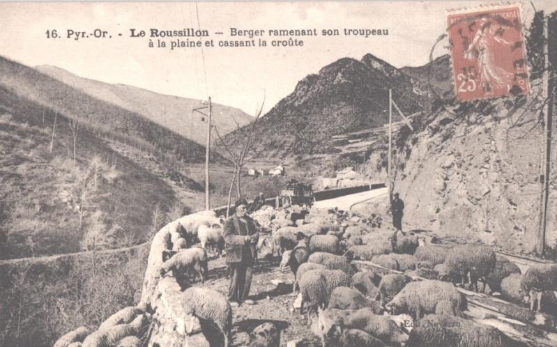 El tren petit de l'Alt Vallespir. 157hvd1