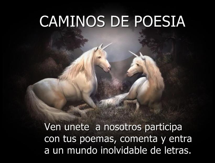 CAMINOS DE POESIA