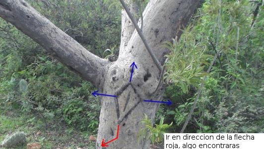 Símbolo en árbol 2s6ohh5