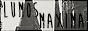 Lumosmaxima