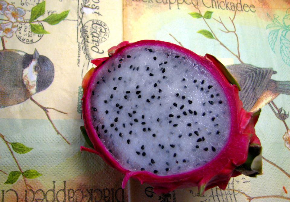 Draakonivili (Pitaya, Dragonfruit) B7b9r5