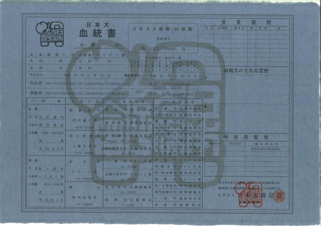 Takeshi - Такеши Hs2ul5