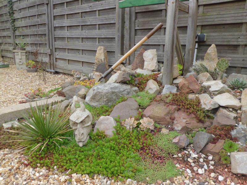 mon jardin dans les hauts de france - Page 2 T7zcrn