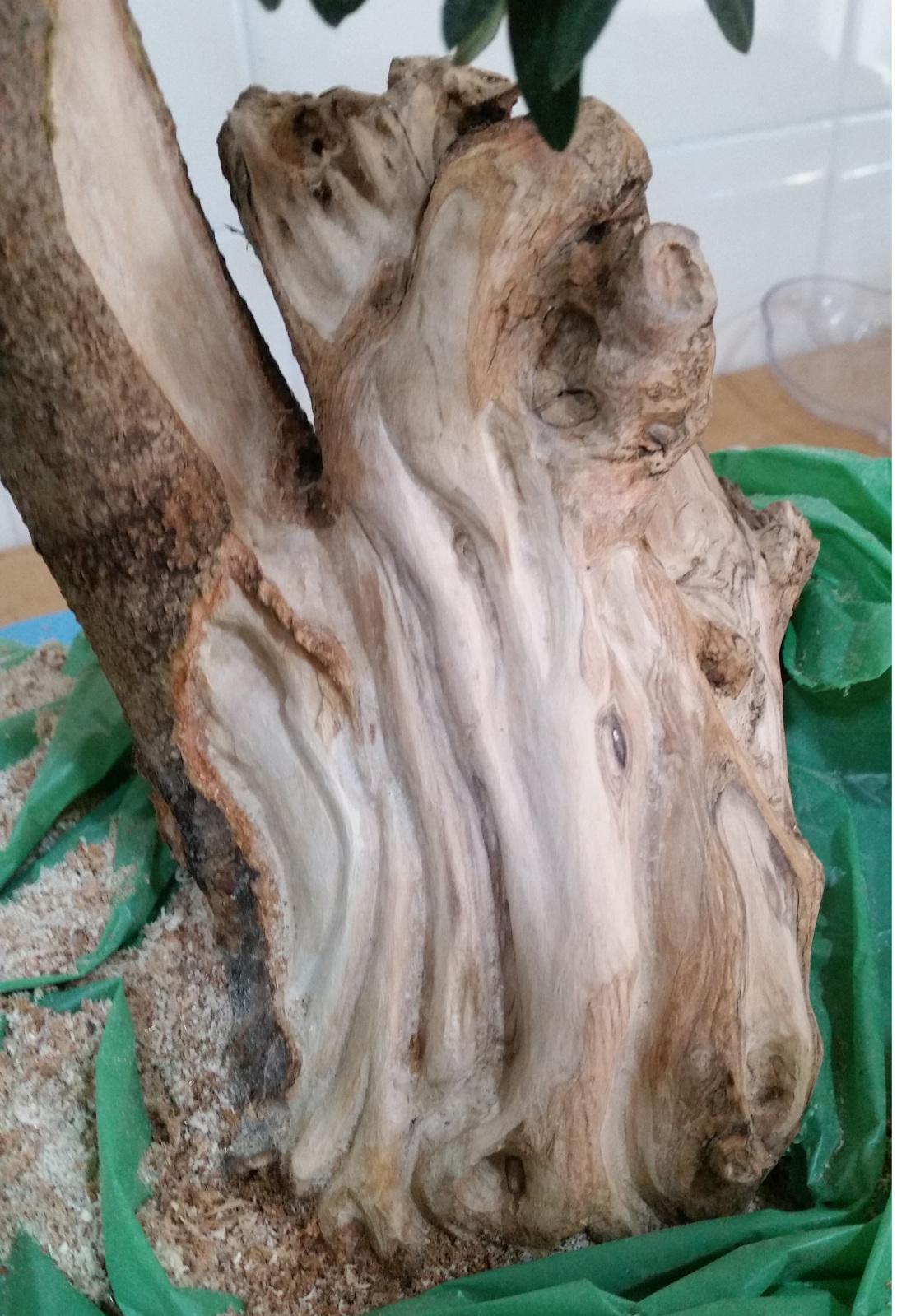 a ver que os parece el trabajo de madera en mi olivo 11uexbr