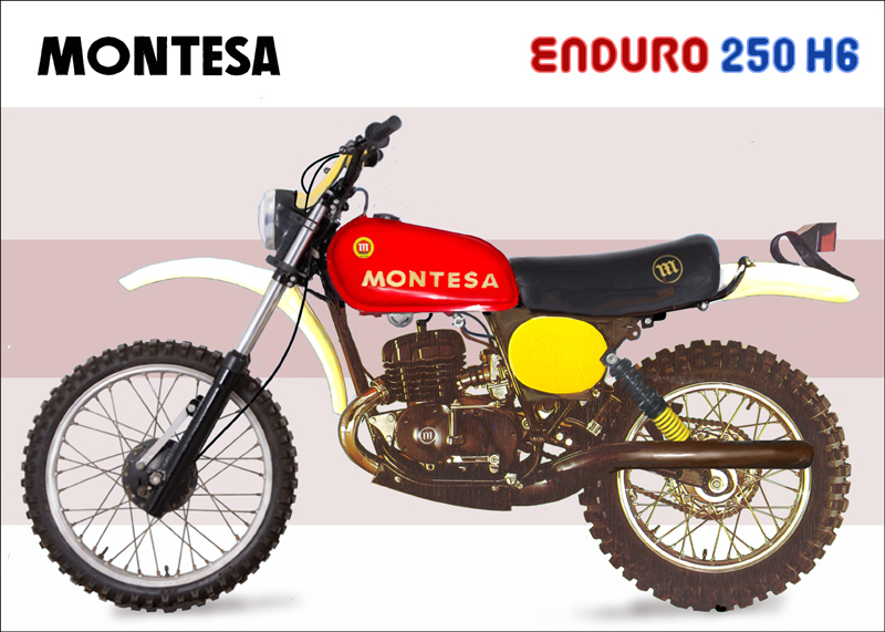 Enduro 250 h Vs 250 h6 20u25v5