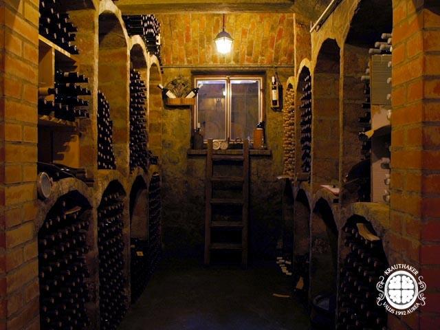 Gnojidba vinograda 2ir2n8p