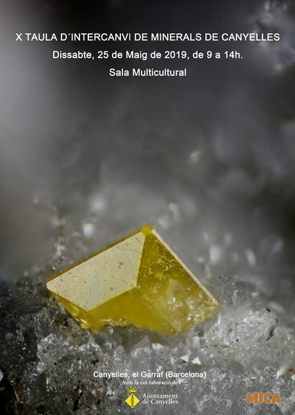 minerals - X Taula d'Intercanvi de Minerals de Canyelles 2llejpc