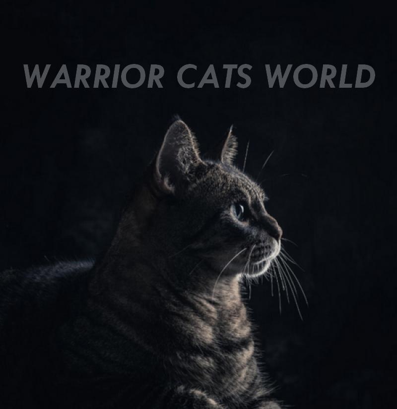 Warrior Cats World
