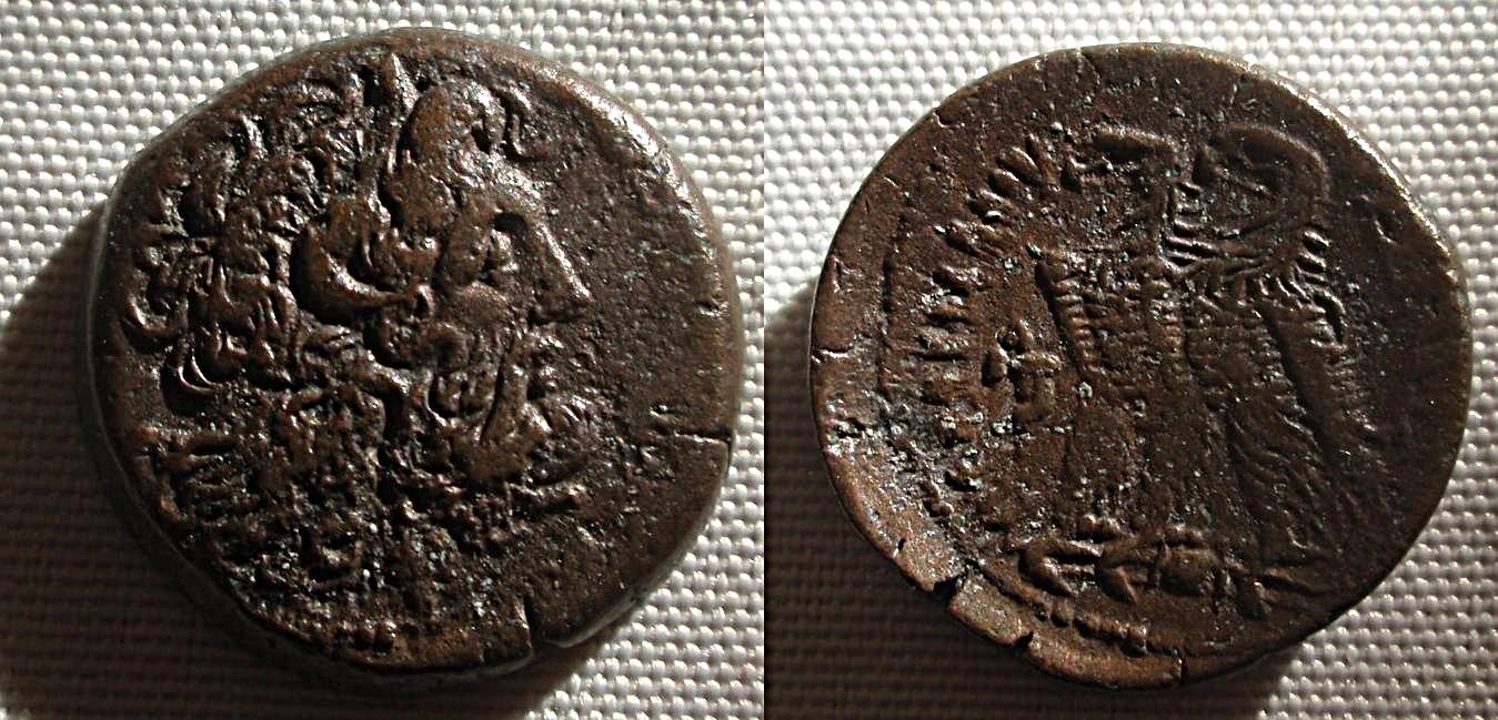 AE20 de Ptolomeo VI Filomenor.  ΠTOΛEMAIOY ΒΑΣΙΛΕΩΣ  1o5e6q