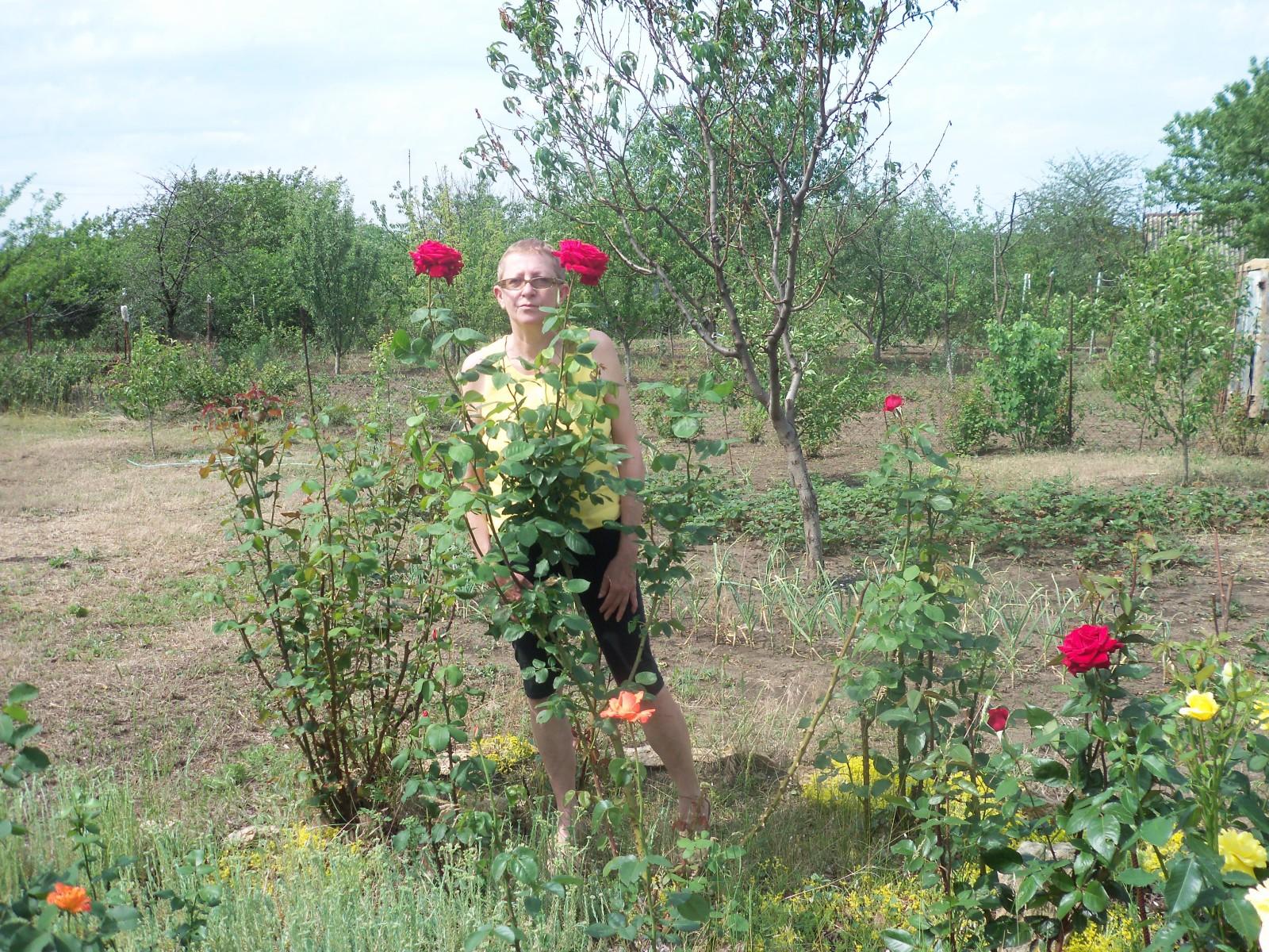 Садовые товарищи - Страница 4 1z6s9hx