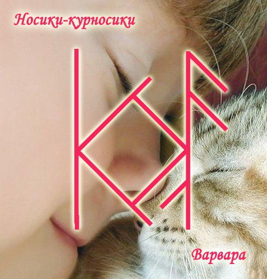 "Став ""Носики-курносики"" Автор Варвара 28byzxi"