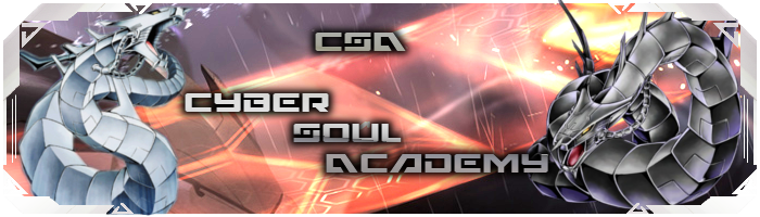 Cyber Soul Academy and SSA Assoc.