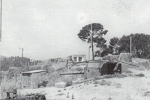 Tol 002, MKB 7./682 et MF 3./819, Ste Marguerite (Toulon 83) - Page 4 J66621