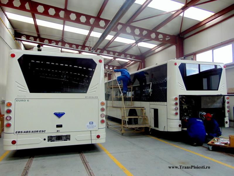 Euro Bus Diamond Rj49bm