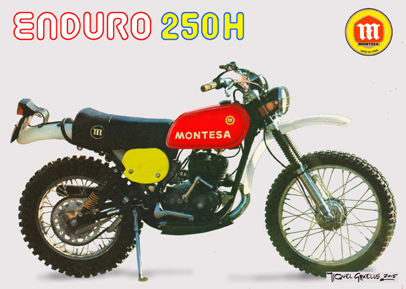 Enduro 250 h Vs 250 h6 Xqesus