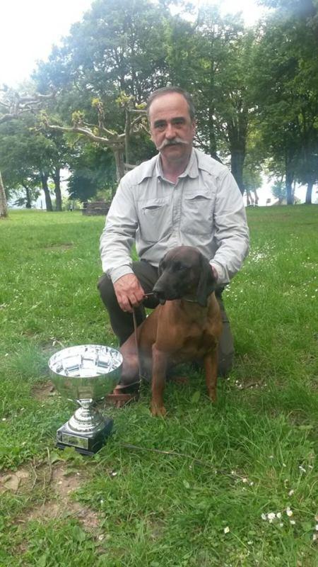 Javier Miranda y su Sabuesa de Baviera Alma campeones de la copa de españa de rastro h40 Znkfvq