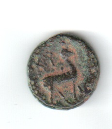AE13 de Kyme. Aeolis 10wnqir
