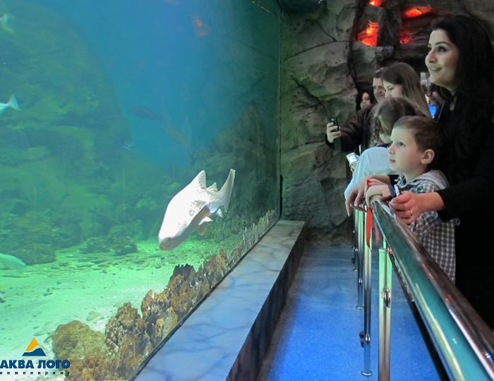 """Первый и ранее самый большой океанариум в Москве - недалеко от нашего ЖК """"Летний сад"""" 24wl"""