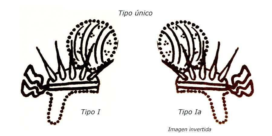 Las coronas de los shas de Persia. 2edmnf7
