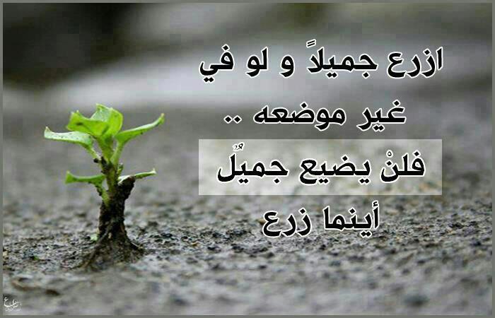 نصيحة كل يوم 2jahni0