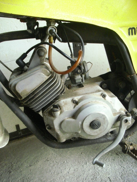 Otra Torrot Mustang 2m64ymd