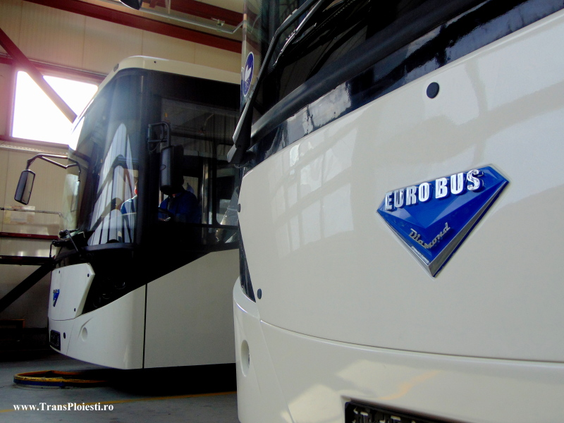 Euro Bus Diamond 2q85wd4