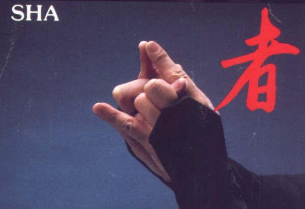La meditación del Ninja: Kuji-Kiri 2rfg9wy