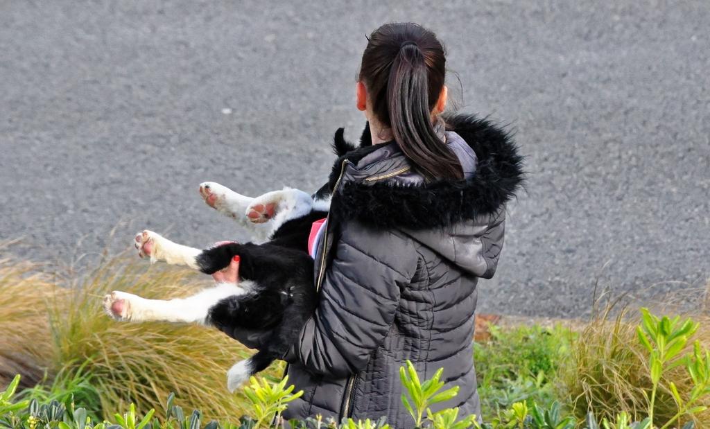 jeune inconnue au chien ! 4v5kxi