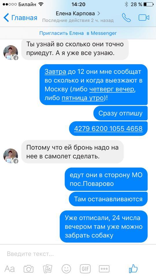 Афера Елены Карповой №???? 68by41