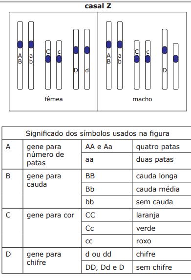 genética R0wpjm