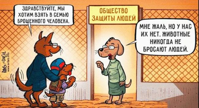 Советы начинающему собаководу (в картинках) - Страница 3 213nipf