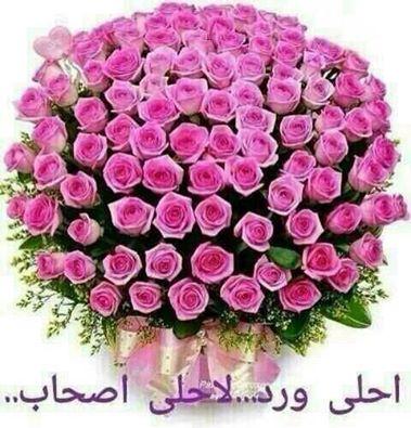 حمدالله على سلامتك إشراقتنا فاتن فؤاد 2uq27ig