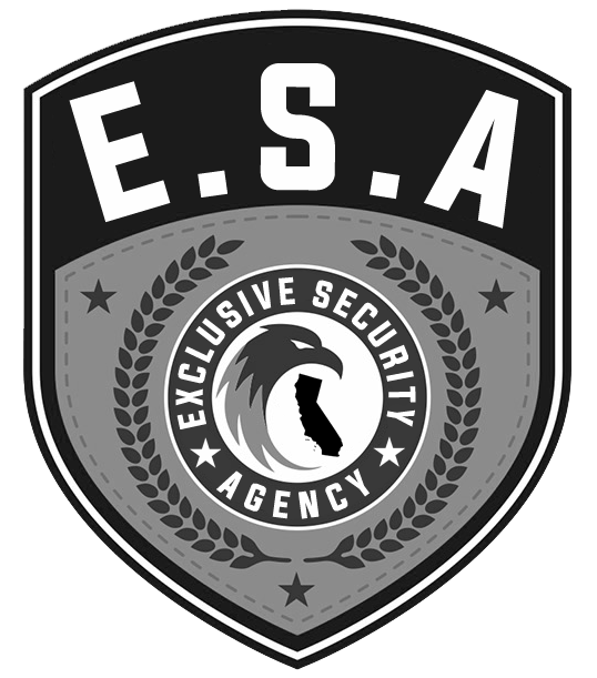 [Subasta] Licencia de Empresa de Seguridad - Exclusive Security Agency 2wmkk93